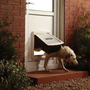 Basculante per cani Locate Varesino