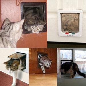 Basculante per gatti
