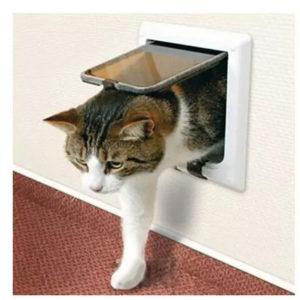Basculante per gatti Molteno